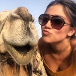 camel-kissy-picture