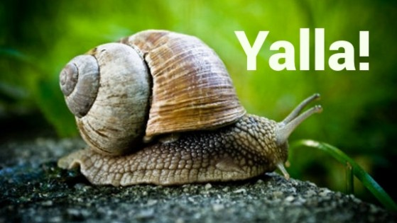 Israeli Slang- Yalla