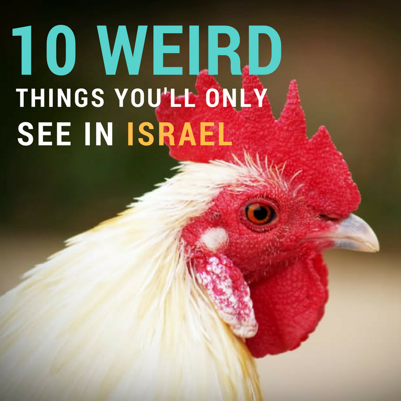 10 weird things you would see in Israel